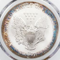 $1 2001-P American Silver Eagle PCGS MS67 Toned