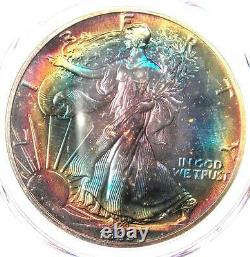 1989 Toned American Silver Eagle Dollar $1 ASE PCGS MS67 Rainbow Toning Coin