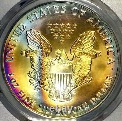 1993-P American Silver Eagle PCGS MS68 Vibrant Color Rainbow Toned