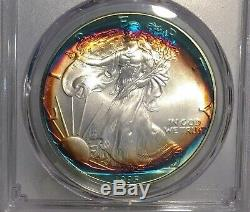 1995 American Silver Eagle PCGS MS68 Rainbow Blue Cats Eye Toned Dual Toning