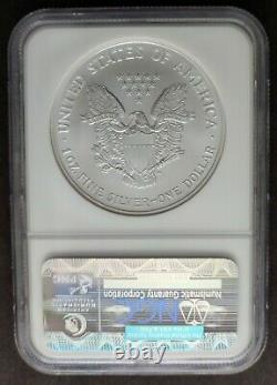 2002 MS 70 American Silver Eagle NGC S$1 Brown Label MS70