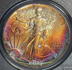 Beautiful 1987 PCGS MS68 Superb Gem Colorful Toned American Silver Eagle