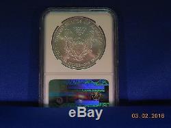 N. G. C. 2006-W (Burnished) 20TH. Anniversary Silver American Eagle MS-70
