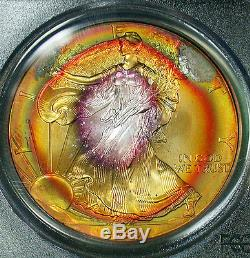 Wild 1999 PCGS MS66 Gem Rainbow Target Toned American Silver Eagle
